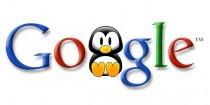 google, google pingvin, google pingvin algoritmus, google algoritmus, keresőoptimalizálás Pécs