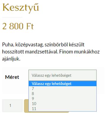 weblap készítés, weblap készítés Pécs, honlap készítés, honlap készítés Pécs